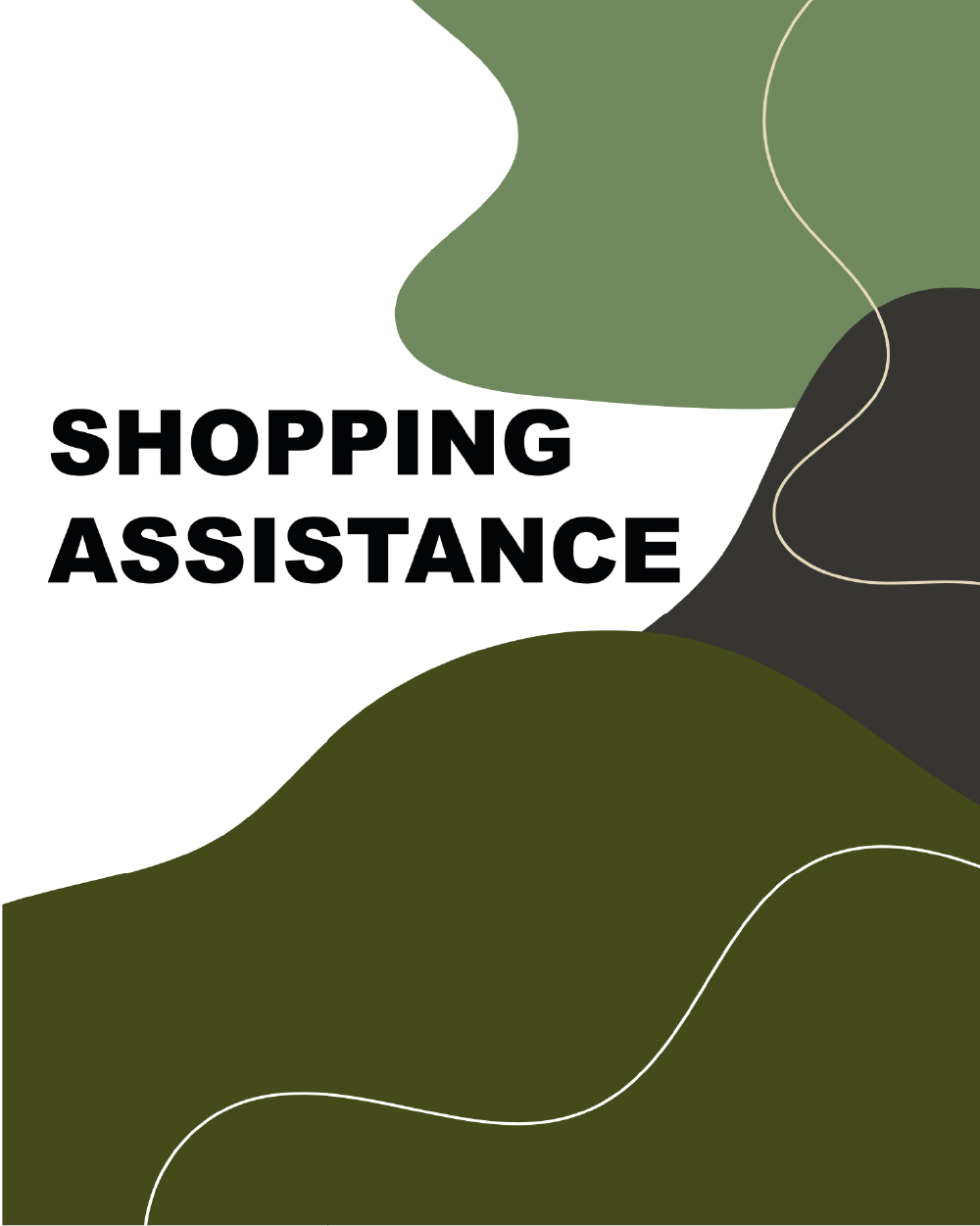 shopping assistance-100