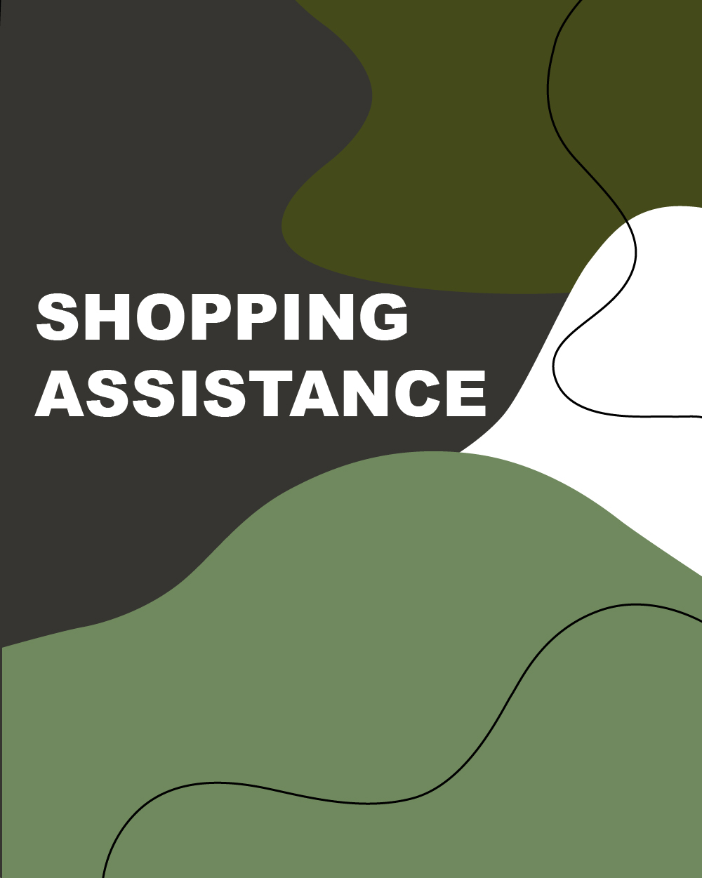 shopping assistance-hov-2-100